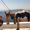 On the caldera with the Santorini donkey and the volcanic islands